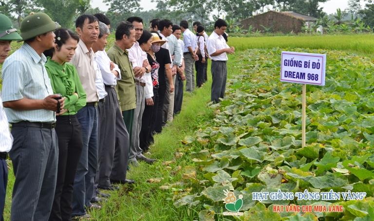 http://www.dongtienvang.com/files/assets/banner2.jpg
