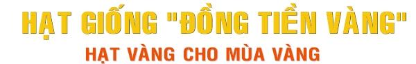 http://www.dongtienvang.com/files/assets/banner93.jpg